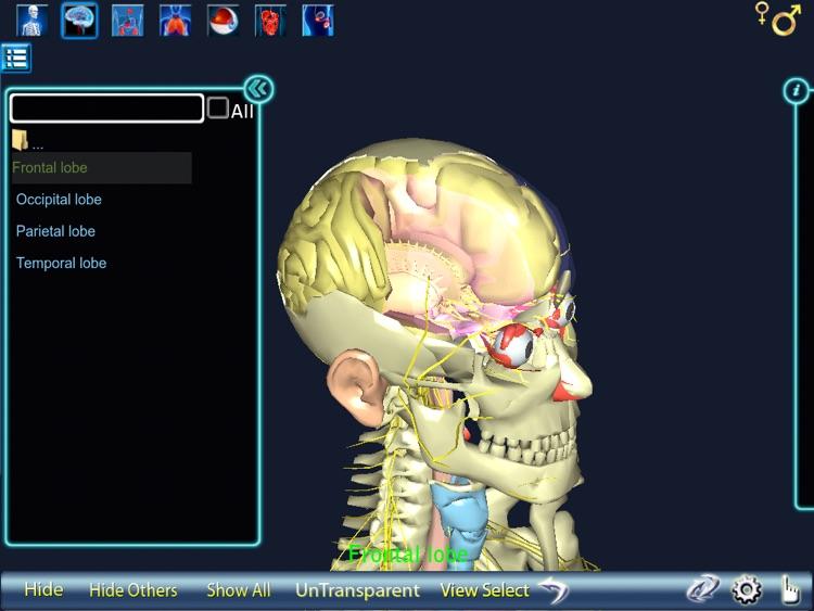 Human Body 3D for iPad screenshot-4