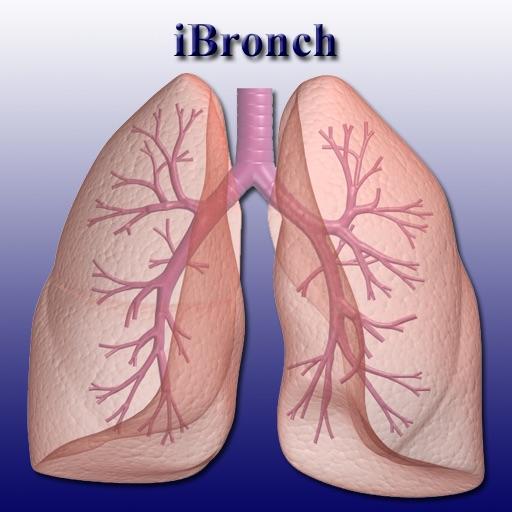 iBronch