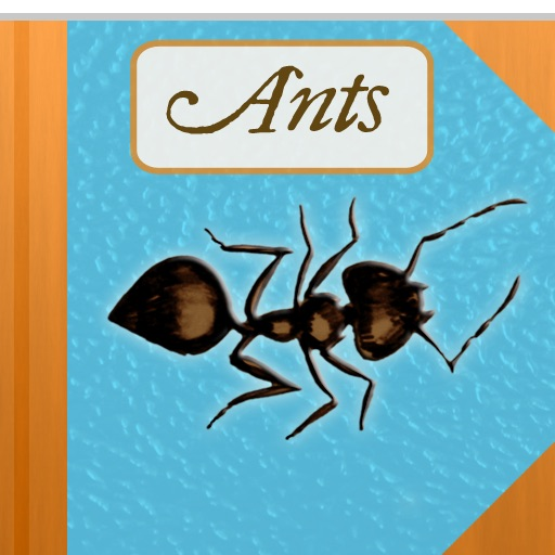 The Strange & Wonderful World of Ants