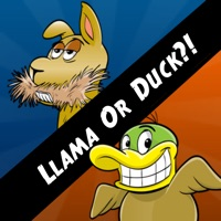 Codes for Llama Or Duck?! Hack
