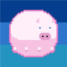 Flabby Pig