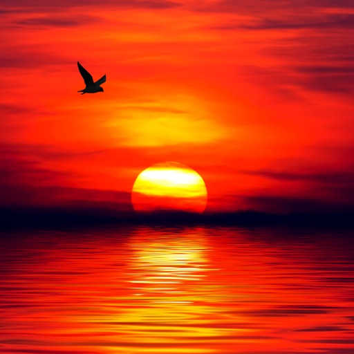 Sunsets Wallpapers & Backgrounds