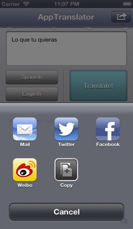 AppTranslator Lite