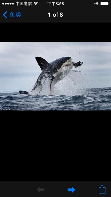 海洋百科 screenshot-4