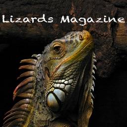 Lizards Magazine
