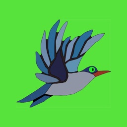 Bird Songs - Beautiful and Relaxing Sounds