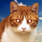 猫バイブ - リモートコミュニケーター icon
