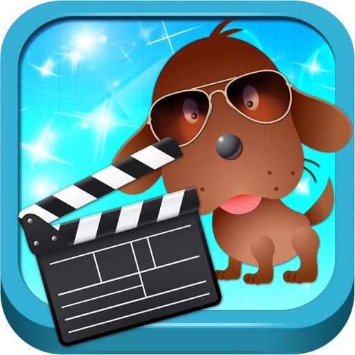 Hollywood Dog Training & Tricks