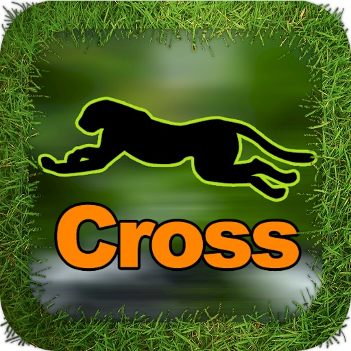 Cheetah Cross Game HD Lite icon