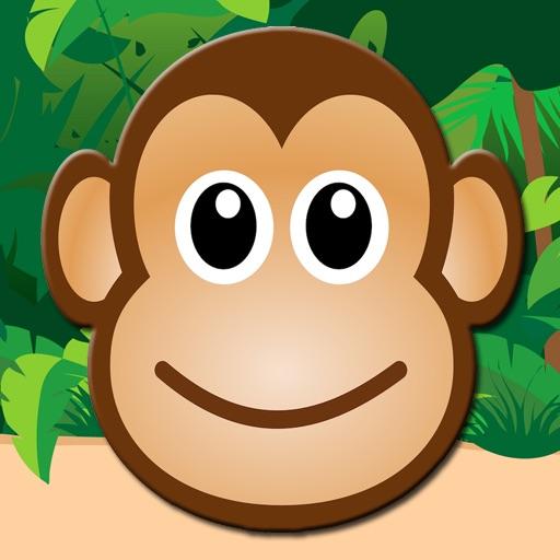 Monkey Kid