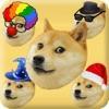 Swipe the Doge