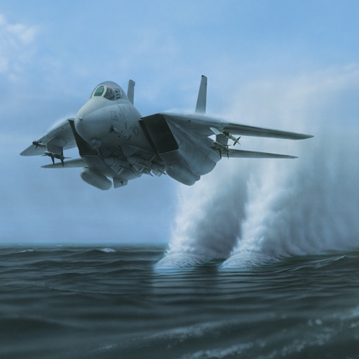 Military Fighter and Recon Aircraft Wallpapers by Dru Blair