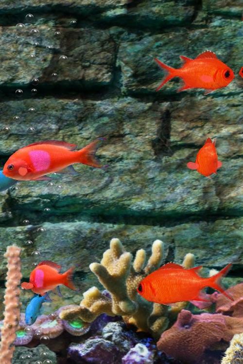 MyReef 3D Aquarium screenshot-3