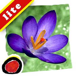 Spring Changes is an interactive story for kids about the most important changes of the spring season, told in brief, simple words and shown in beautiful seasonal photographs by Ellen B. Senisi.  (iPad Lite version; by Auryn Apps)