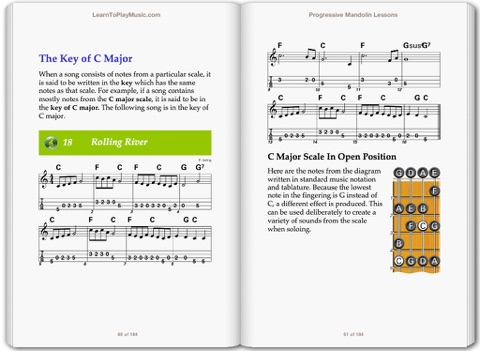 Mandolin Lessons for Beginners by LearnToPlayMusic com & Peter Gelling on  Apple Books