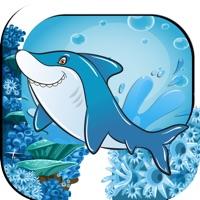 Codes for Dolphin Swim Safe Ocean Adventure Hack