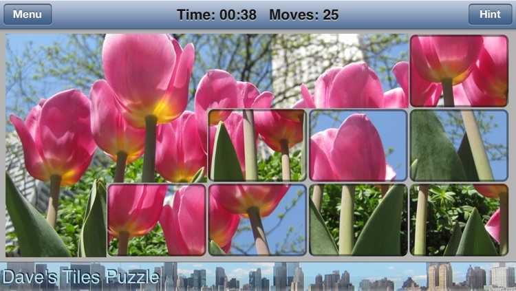 Dave's Tiles Puzzle Lite screenshot-1
