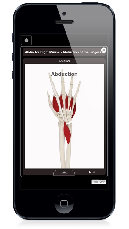 Hand & Wrist Pro III with Animations - iPhone Edition screenshot-4