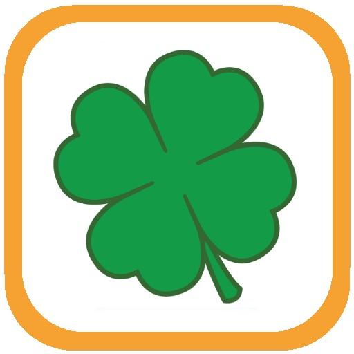 EURO 2012 - Ireland icon