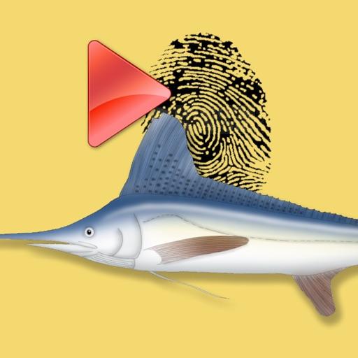 Game Fish Identification