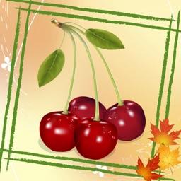 Fruits - Titan Memory Match Game