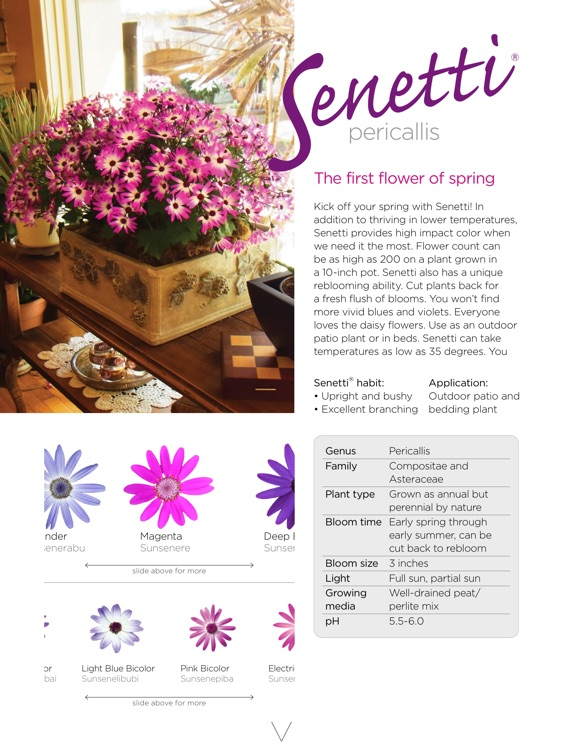Easy Gardening Tips - Revealed by the breeder