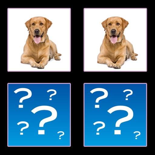 Dogs Match HD