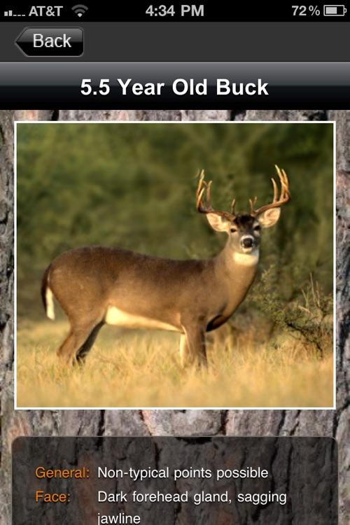 Deer Scoring & Field Aging Guide
