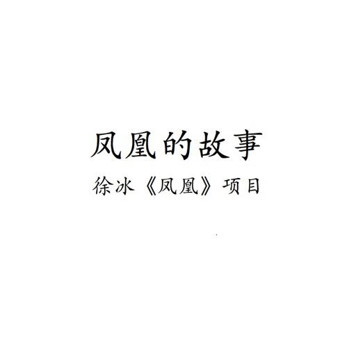 徐冰-凤凰的故事