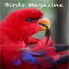 Birds Magazine - iPhoneアプリ