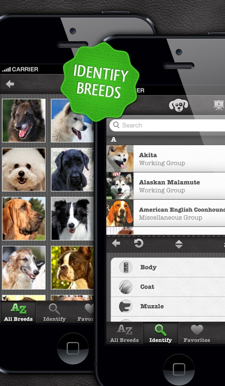 Dogs PRO - NATURE MOBILE - Dog Breed Guide and Quiz Game