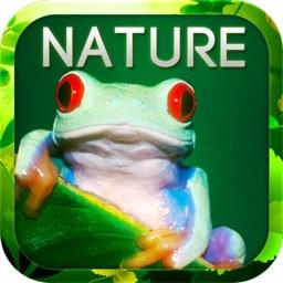 Animal & Nature Encyclopedia To Go