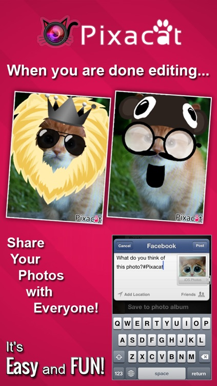Pixacat: Free Photo Editor for Cat Lovers – Edit cat pictures, share them on Facebook and Instagram screenshot-3