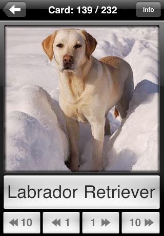 Dogs Flip: Flashcards of Dog Breeds