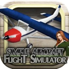 Cessna 3D flight simulator icon