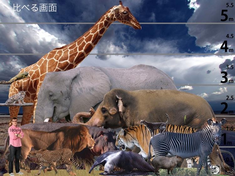 Animal Life Free for Japan screenshot-3