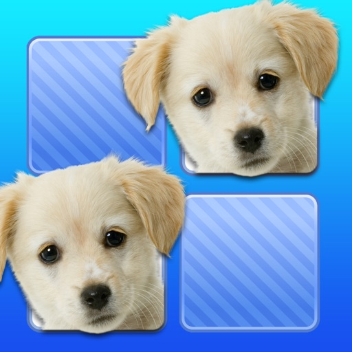 Memo Game Pets Photo for kids young childrens toddler icon