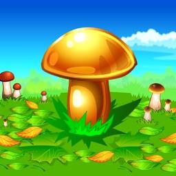 Mushroomers
