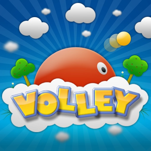 Volley Review