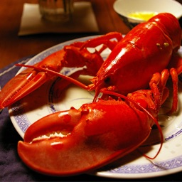 Easy and Delicious Seafood Recipes Lite