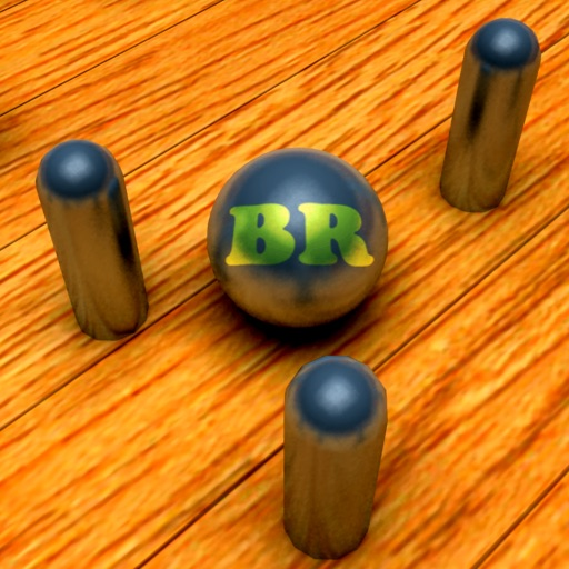 Pin-O-Ball BR icon