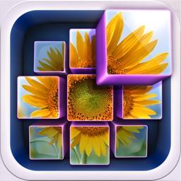 InstaMosaic - Photo Mosaic Generator