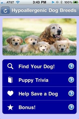 Best Dog Breeds - Hypoallergenic