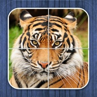 Codes for Jungle puzzle - jigsaw puzzle for kids Hack