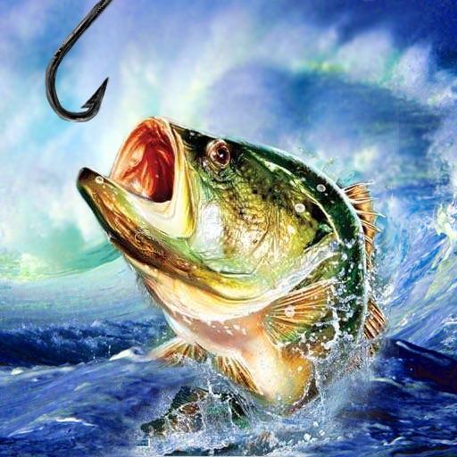 Crazy Fishing Champion