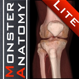 Monster Anatomy Lite - Knee
