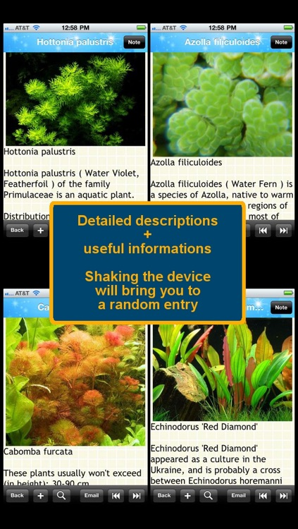 Aquarium Plants Encyclopedia screenshot-0