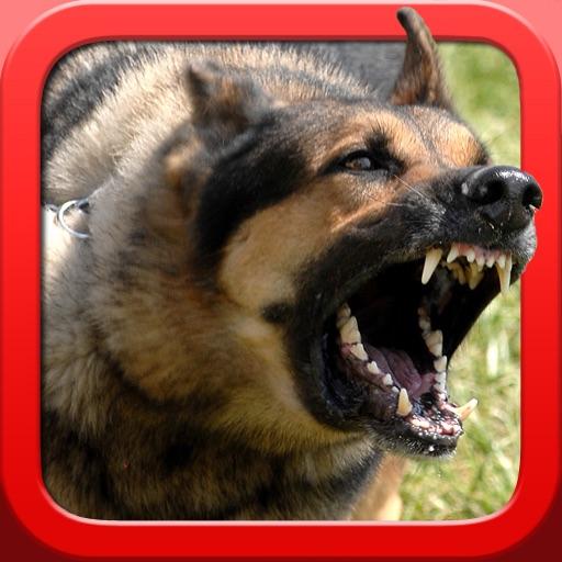 Guard Dog for iPad