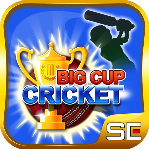 Big Cup Cricket