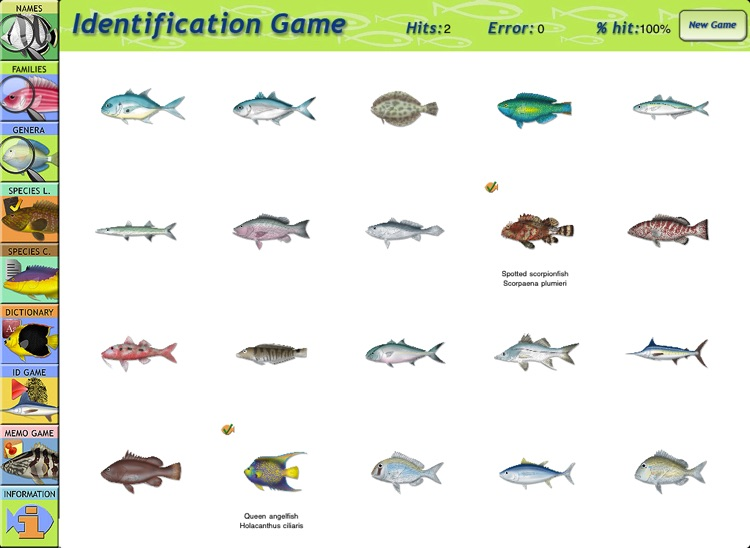 Marine Fishes - Identification Guide for iPad screenshot-4